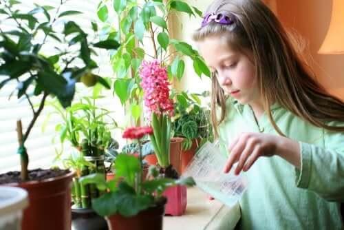 Quais responsabilidades uma criança de 8 a 12 anos pode assumir?