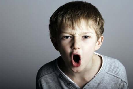 Menino gritando e rompendo o contrato comportamental