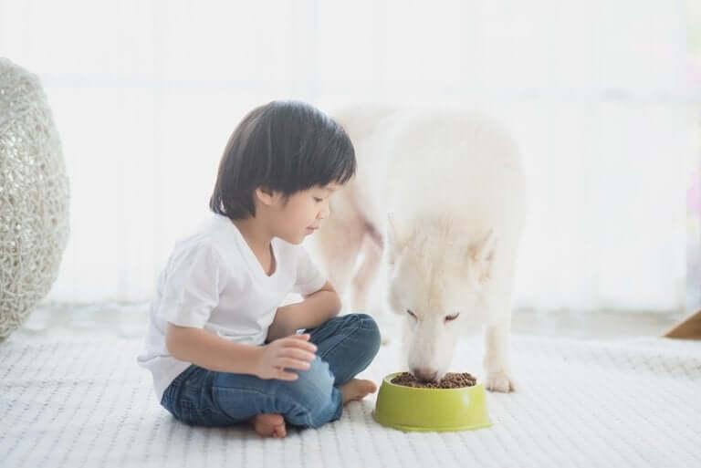 É bom deixar as crianças fazerem as coisas sozinhas?