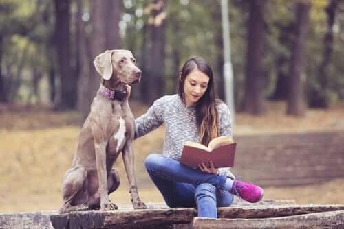 A terapia com animais na adolescência