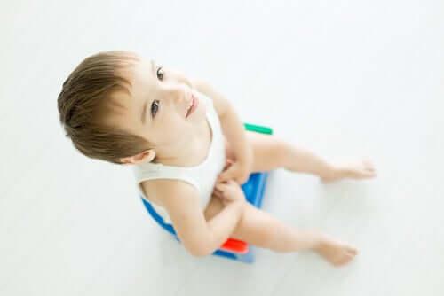 Tipos de troninho para bebês