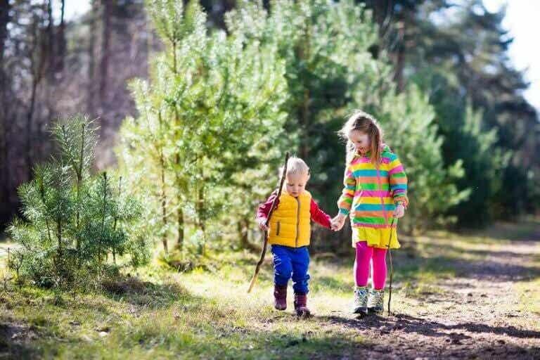 Passear na natureza: só benefícios