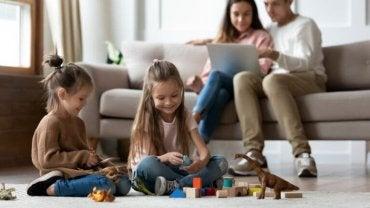 Tipos de família de acordo com o seu grau de coesão