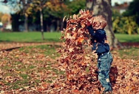 decorar a casa no outono