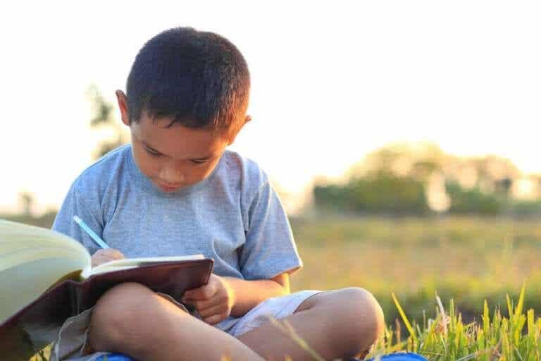 4 ideias para revisar o conteúdo do ano passado durante o verão