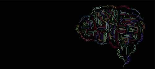 O conceito de inteligência e a sua evolução