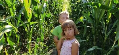 A crise dos 7 anos em crianças