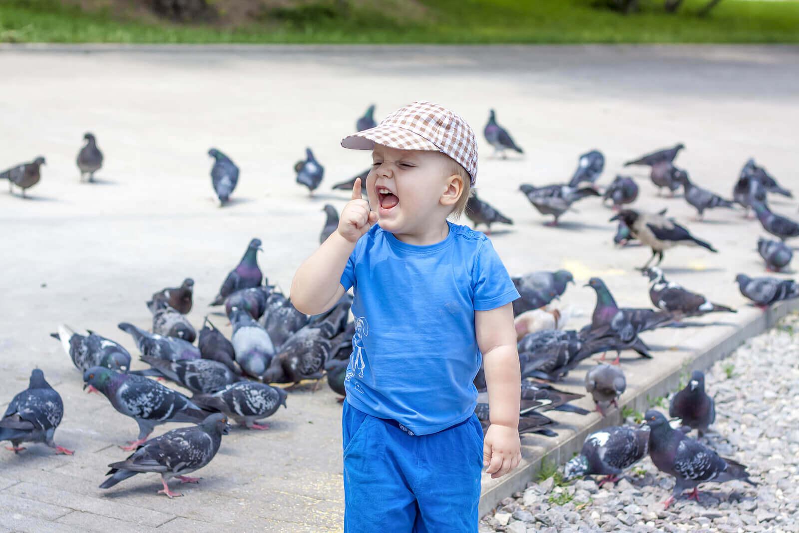 Meu filho tem medo de pássaros