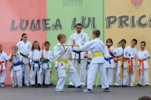 A disciplina e as artes marciais