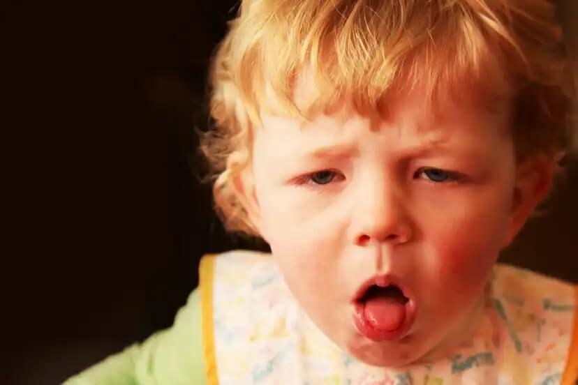 Anafilaxia: picadas de pulgas e aranhas em crianças